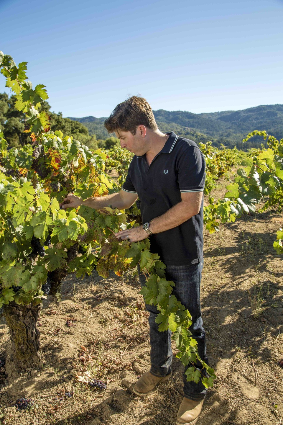 Winemaker Dave Phinney produces blends using Grenache sourced from hillside vineyards in Napa Valley, Sonoma County and Mendocino.