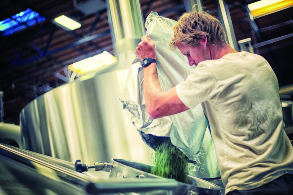 """Stone make its Go To IPA using a technique called """"hop bursting,"""" which helps impart robust flavor."""