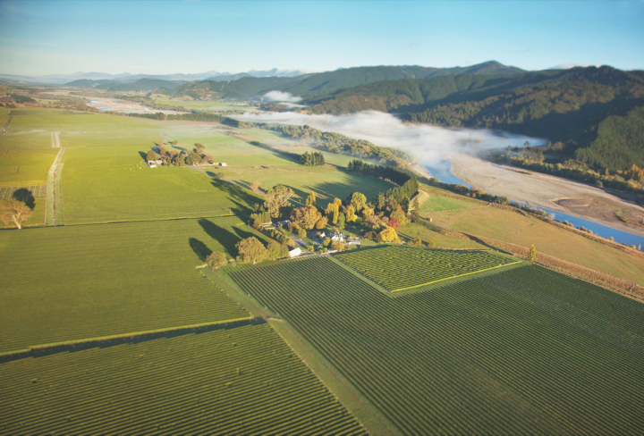 Wine from New Zealand (Constellation Brands' Central Wairau River estate pictured) has advanced dramatically in the last two decades thanks to the popularity of its signature varietal, Sauvignon Blanc.