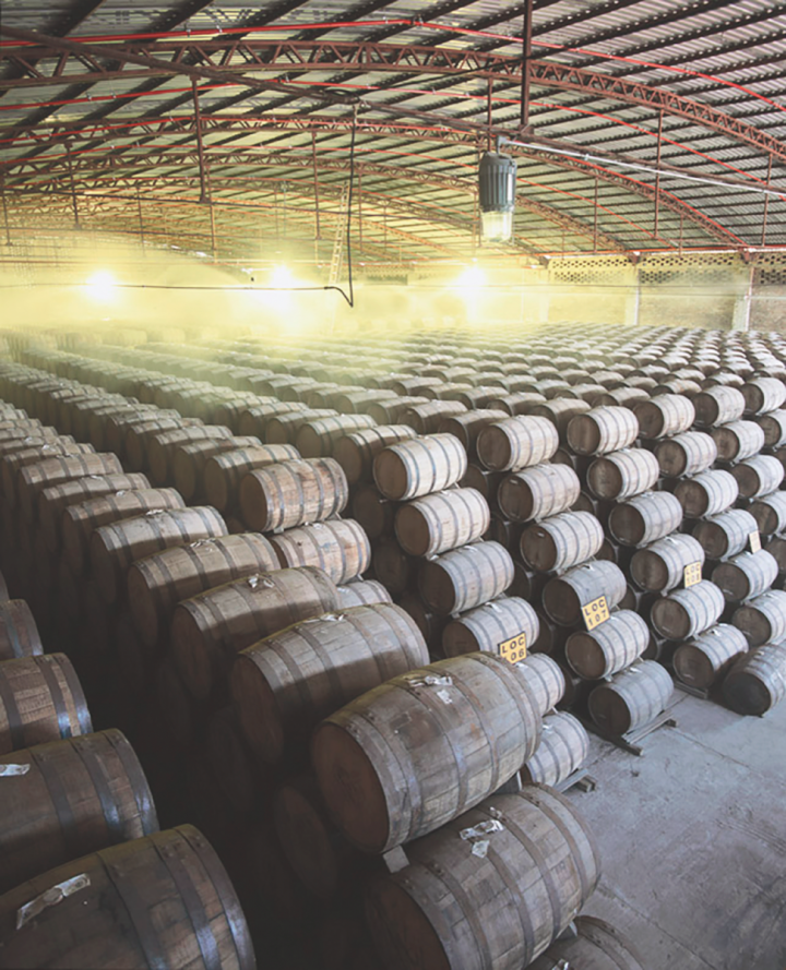 Aged offerings (Don Julio barrels pictured) are getting more popular as consumers discover Tequila's potential as a sipping spirit.