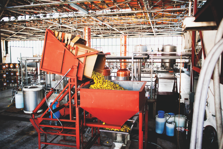 St. George Spirits in Alameda, California, has adapted older distilling techniques to produce its products. Founded as an eau-de-vie distillery, the company distills fruit as soon after harvest as possible. It uses pears (pictured) in its brandy and vodka.