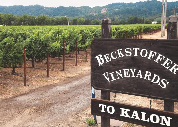 Prized vineyards like To Kalon in Oakville command sky-high prices for grapes—but that hasn't slowed demand.
