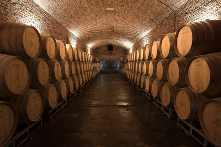 Quintessential Wines began importing the Bodegas y Viñedos Pascual Toso brand (cellars pictured) in June. The company anticipates that consumers will trade up within the range, which is priced from $12 to $120.