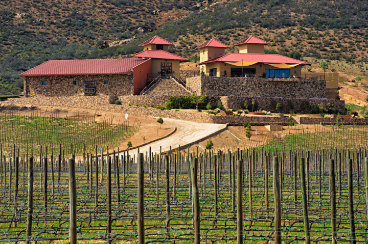 Mexican wine is slowly expanding beyond a niche California base and into more widespread distribution. Wines from the Valle de Guadalupe region (Las Nubes Bodegas y Viñedos winery pictured) have attracted the most premium interest.