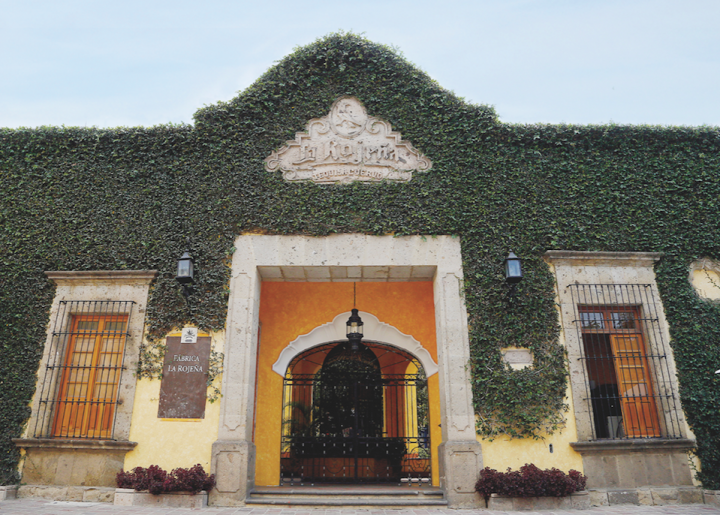 Jose Cuervo (its La Rojena distillery pictured) rose by 4.3 percent to 3.6 million cases last year.