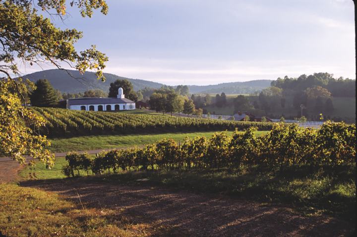 Wine from Virginia's Barboursville Vineyards (pictured) is offered outside of the state.