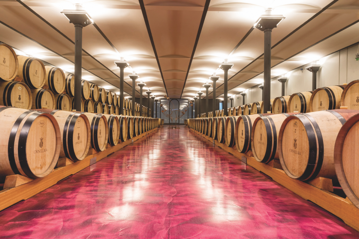 Recent additions from Italy, such as Ornellaia (barrel room above) and Masciarelli, have helped expand the breadth of Vintnus' portfolio.