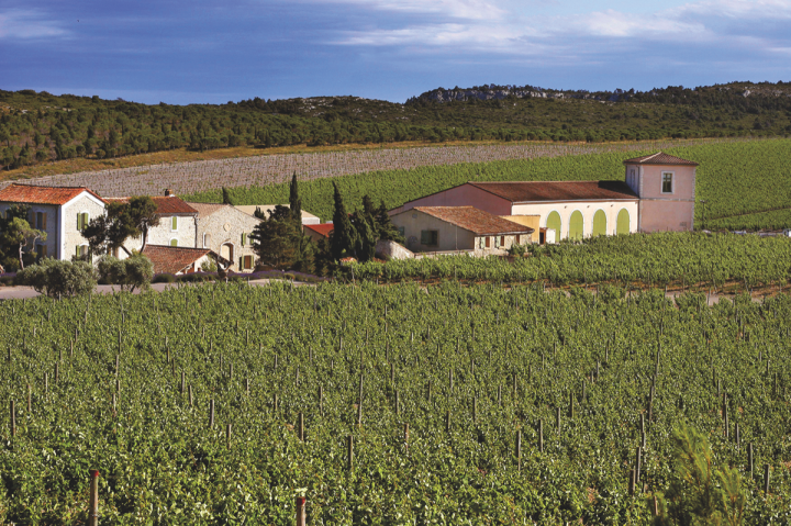 Gérard Bertrand (vineyards pictured) Languedoc Cotes des Roses rosé is a popular year-round selection at Green's Discount Beverage in Atlanta.
