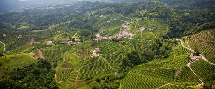 As the Prosecco market expands, producers like Marsuret (Guia Valdobbiadene vineyards pictured) are investing in upscale products with DOCG designations and new offerings such as Prosecco rosé, which they anticipate will be approved by the Italian government in the coming years.