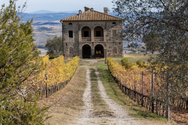 In 2018, Tenuta Sette Ciele—part of the Wilson Daniels portfolio in the U.S.— purchased seven acres of vineyards in Bolgheri (winery pictured). Last year marked the winery's first harvest as part of the DOC.