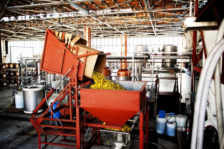 Founded as an eau-de-vie distillery, St. George continues to distill fruit as soon after harvest as possible. It uses pears in its brandy and vodka.