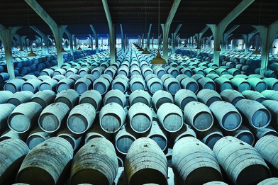 Because of the unique production methods used to make Sherry, the terroir of the bodega itself has a strong impact on the wine. Bodega Valdespino (barrels pictured above) produces a wide range of styles.