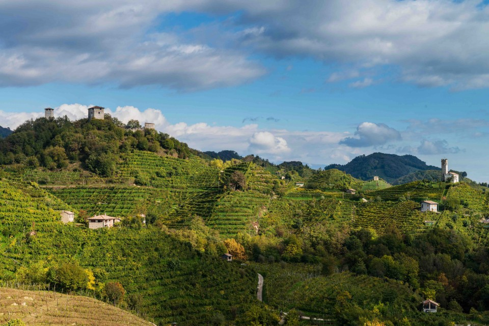 Prosecco made in the Conegliano Valdobbiadene DOCG (vineyards pictured) typically sells for higher prices than DOC labels, although the region's exports remain low.