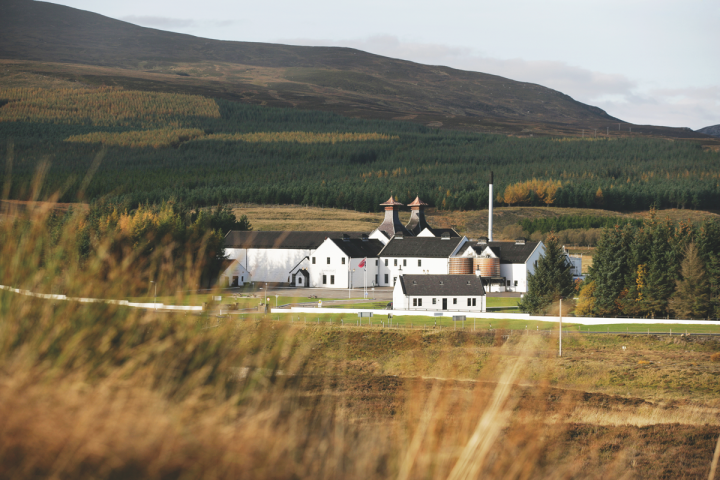 The blended Scotch whisky category has embraced richer taste profiles, higher prices and a broader demographic. Buchanan's (The Dalwhinnie distillery pictured) targets Hispanic consumers.