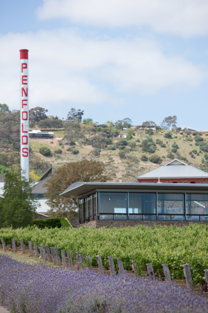 Treasury Wine Estates' Penfolds brand was the only top-10 Australian wine to gain volume in 2014. Treasury has invested significantly in the brand in recent years.