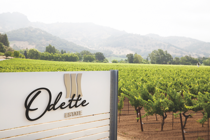 PlumpJack owns three Napa Valley wineries: PlumpJack Winery, Odette Estate Winery (pictured) and Cade Estate Winery. Many PlumpJack venues offer wines from the company's Napa estates.