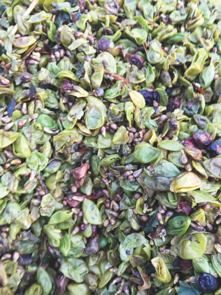 The distillery uses only the freshest of pomace in its grappa, which it sources from vintners its cultivated close relationships with.