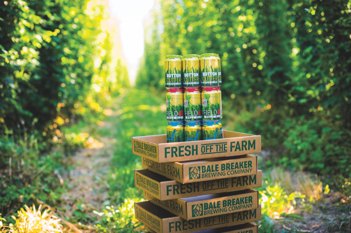 As part of a growing trend, many brewers are starting to incorporate locally grown ingredients in their beers. Bale Breaker Brewing Co. (beers above) in Washington, for example, produces its own hops.