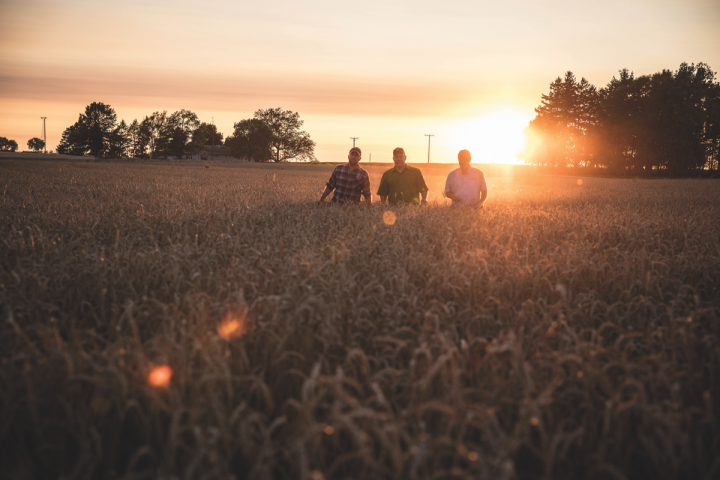Based in rural DeKalb, about an hour outside of Chicago, Whiskey Acres Distilling Co. is located on a 2,000-acre, family-owned farm (grain fields pictured), which grows more than a dozen varieties of corn and supplies all of the distillery's corn and rye.