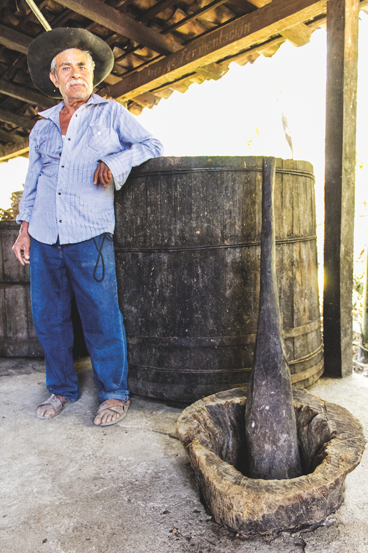 3 Badge Beverage Corp.'s Bozal mezcal (mezcalero Don Alberto Vasquez pictured) strives for sustainability with its replanting initiative, through which the brand plants two agaves for every wild agave harvested.