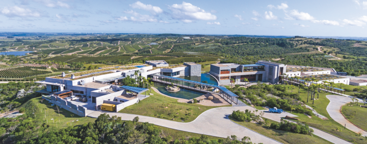 Bulgheroni owns 21 estates spread throughout Uruguay, where the company's first estate and crown jewel, Bodega Garzón (pictured), is located.
