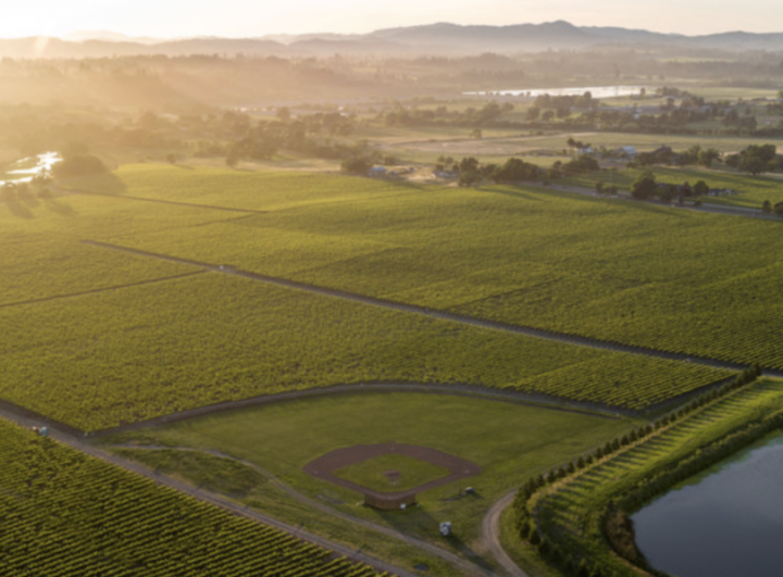 California's North Coast is home to many elegant, high-end Pinot Noir labels. In the Russian River Valley, Balleto Family Vineyards  (pictured) produces a portfolio of 100% estate-grown and -bottled wines, with a special focus on vineyard-designate Pinot Noir.