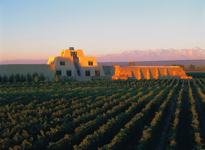 Even as the majority of Argentinian wine brands have encountered volume losses in recent years, Mendoza-based Bodega Catena Zapata (winery pictured) has managed to grow, largely thanks to its focus on high-end, site-specific offerings of Argentina's signature varietal, Malbec.