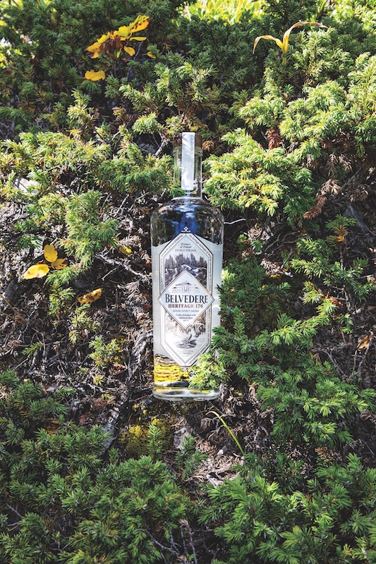 As imported vodka looks to recapture some of its magic, brands are differentiating in various ways. Poland-based Belvedere is focusing on terroir, as in its Heritage 176 expression (pictured)