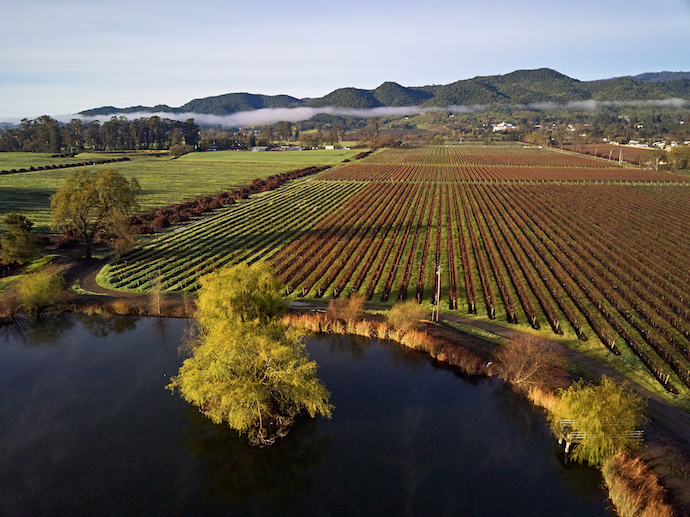 Napa's Silverado Vineyards (pictured) is among the luxury players that have moved a great deal of their selection from the on-premise to grocery shelves, particularly at the independent level.