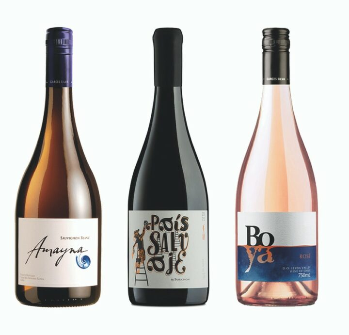 Ed Lehrman of Vine Connections (lineup pictured) expects the Chilean wine to grow as the restaurant industry re-opens.