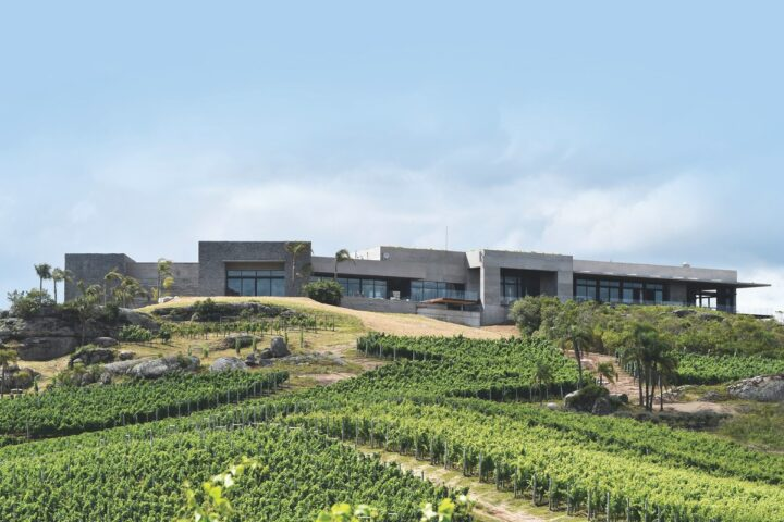 The largest Uruguayan wine in the U.S., Bodega Garzón (vineyard pictured) sold roughly 30,000 cases in the market last year, according to importer Pacific Highway Wines. The brand's Tannat varietal is its top-seller, but others like Albariño are also making waves.