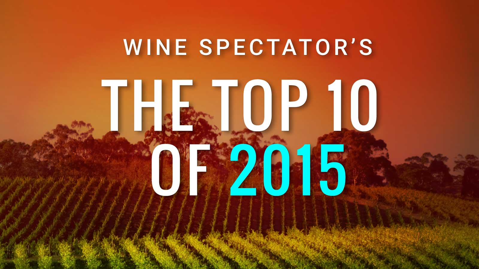 Top 10 Wines of 2015 | Wine Spectator's Top 100