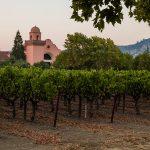 赤霞珠的格罗斯储备葡萄园葡萄块的行,在后台酒庄的独特冲天金宝博手机