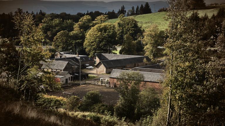 Ardgowan Scotch Distillery Seeks American Investors