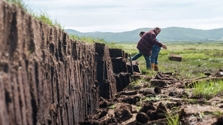 Everything You Need to Know About Peat in Whisky
