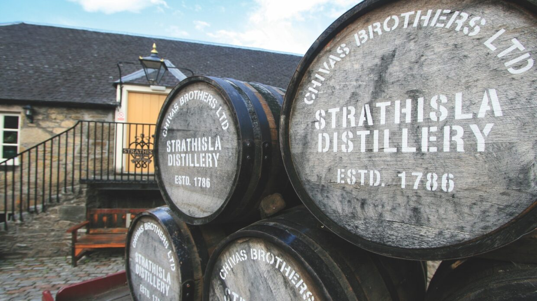 Barrels of scotch whisky