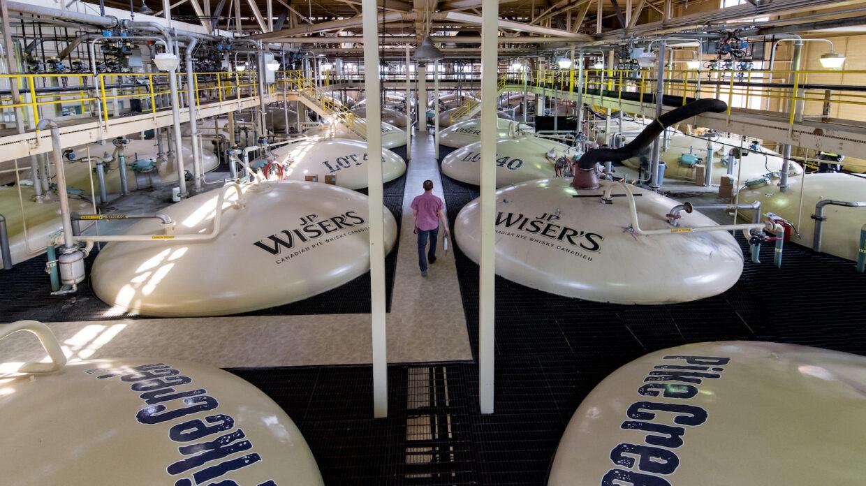 aerial view of fermentation tanks at hiram walker distillery