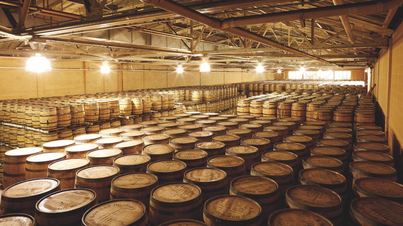 Palletized barrels in a warehouse
